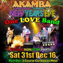 Nye-one-love-band-1479244597