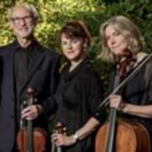 Bromsgrove-concerts-fitzwilliam-string-quartet-1566044263