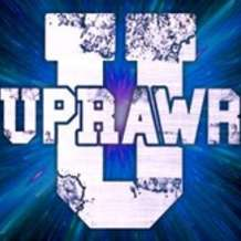 New-years-eve-uprawr-1544632296