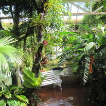 Guided-tour-glasshouses-1552137596
