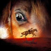 War-horse-1501662314