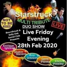 Starstruck-multi-tribute-duo-show-1579548814
