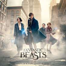 Fantastic-beasts-and-where-to-find-them-1499115543