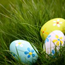 Easter-egg-hunt-1552245279