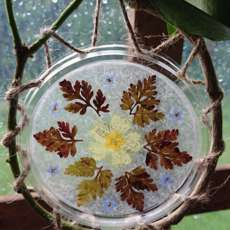 Sophie-s-summer-suncatchers-1597851072
