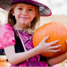 Take-your-pick-at-the-gracechurch-pumpkin-patch-1539540653