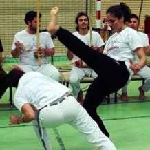 Capoeira-class-1550262603