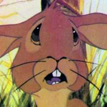 Cinema-bambino-watership-down-1536688613