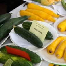 Moseley-and-district-annual-produce-show-1344889484