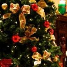 Christmas-carols-afternoon-tea-1493638021