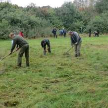 Moseley-bog-joy-s-wood-volunteer-day-1385932797