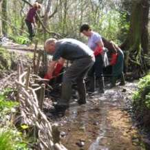 Moseley-bog-joy-s-wood-volunteer-day-1484690083