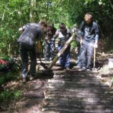 Moseley-bog-joy-s-wood-volunteer-day-1492205174