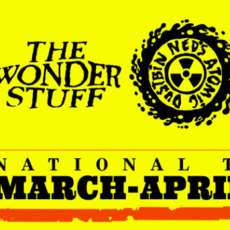 The-wonder-stuff-ned-s-atomic-dustbin-1509910660