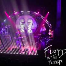Floyd-in-the-flesh-1574109551
