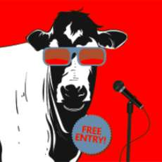 The-mad-cow-comedy-club-1538213033