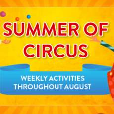 Summer-of-circus-1563185333