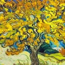 Paint-like-van-gogh-1566762405