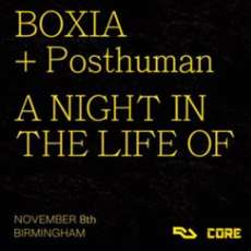 Boxia-a-night-in-the-life-of-1571148281