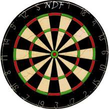 Nine-dart-finish-1343595279