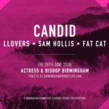 Candid-llovers-sam-hollis-fat-cat-1528482155