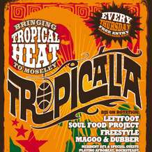 Tropicalia-2-1338409535