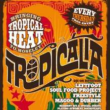 Tropicalia-1342815376