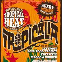 Tropicalia-1345541845