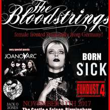 The-bloodstrings-castle-falcon-1509037771