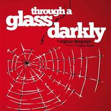 Through-a-glass-darkly-1353796277
