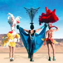 The-adventures-of-priscilla-queen-of-the-desert-1555663322