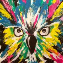 Artnight-paint-sip-evening-colourful-owl-1568125111