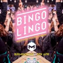 Bingo-lingo-1554232765