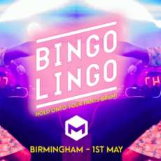 Bingo-lingo-1555835331
