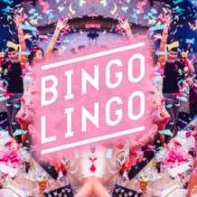 Bingo-lingo-1563913876