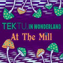 Tektu-in-wonderland-1581159354