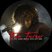 Tina-turner-tribute-1578248713