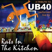 Rats-in-the-kitchen-1367957455