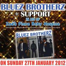 Bluez-brotherz-1357427433