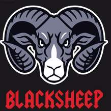 Black-sheep-1579445787