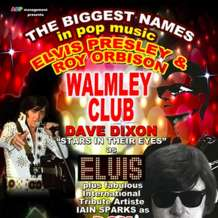 Elvis-roy-orbison-tribute-show-1534881379
