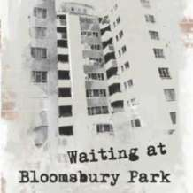 Waiting-at-bloomsbury-park-book-launch-1504169052