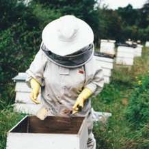 Introduction-to-beekeeping-1496524438