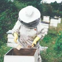 Introduction-to-beekeeping-1511713049