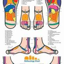 Introduction-to-reflexology-1514574881